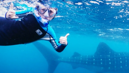 Jackson was snorkelling with his father when he was attacked.