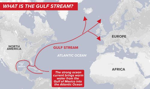 Diagram showing flow of the Gulf Stream current up the eastern seaboard of the US and Canada, in the Atlantic Ocean.