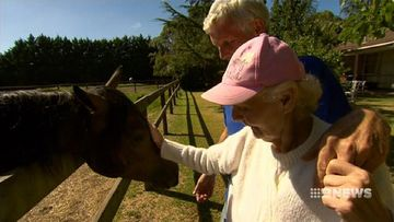 VIDEO: 73-year-old horse trainer continues to fight his battles