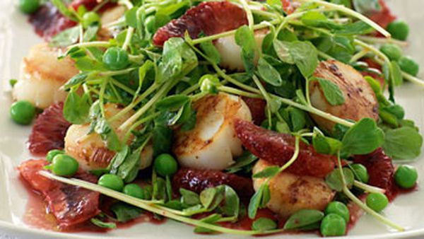 Scallops with peas & blood orange