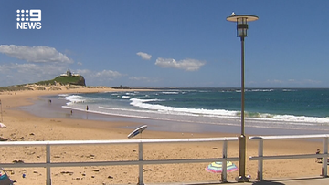 Newcastle beaches closed due to sharks