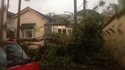 Trees down, some trains suspended after intense Brisbane storm