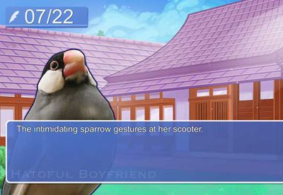 Bizarre pigeon dating game released in glorious HD