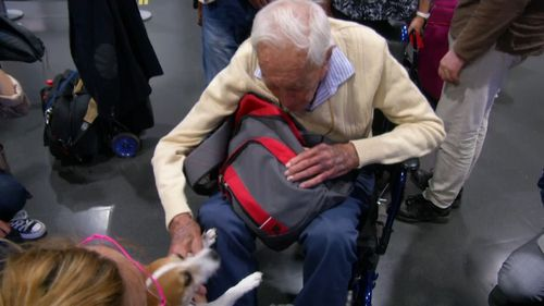 Petting a dog in a warm welcoming crew at Basel's airport, David Goodall answered reporters' questions.