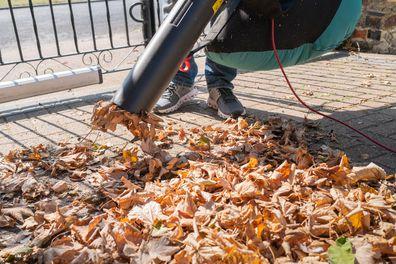 Person using a leaf vacuum