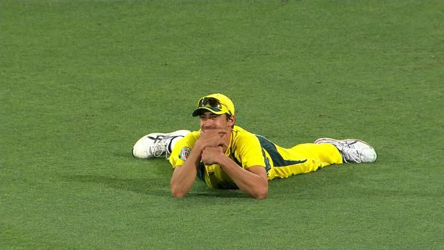 Mitchell Starc takes 'catch of the summer'