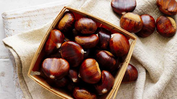 How to cook, peel and store chestnuts. Image:Chestnuts Australia