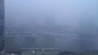 This is what Melbourne looks like when it is covered in fog. (@jess_louisb)