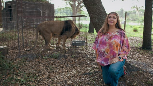 """Carole Baskin, of Florida's Big Cat Rescue, is one of the big cat enthusiasts made famous by """"Tiger King."""""""