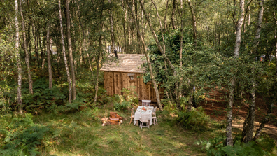 Airbnb Winnie the Pooh treehouse