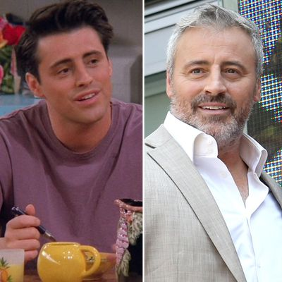 Matt LeBlanc as Joey Tribbiani