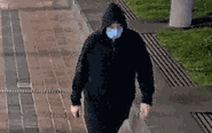 Man sexually assaulted woman after asking for the time outside Melbourne train station