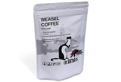 Weasel vomit coffee