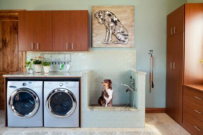<strong>Laundry living</strong>