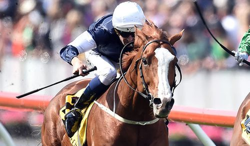 Experts tip highly competitive race for the Melbourne Cup