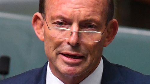 Former Prime Minister Tony Abbott is part of an internal Coalition group that is backing more coal power. (AAP)