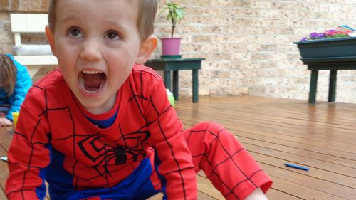 William Tyrrell disappearance inquest Sydney NSW Coroner