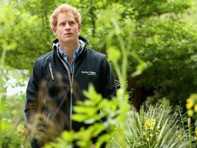 Prince Harry, 2015