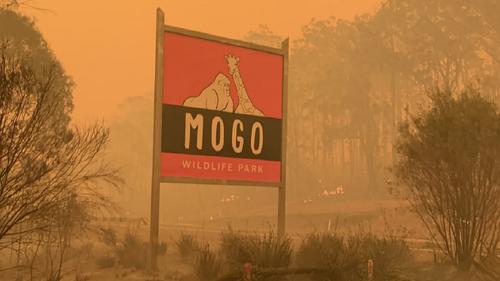 Mogo Wildlife Park sign surrounded by bushfire smoke.