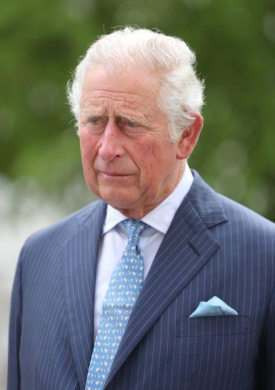 Prince Charles streamlined monarchy.