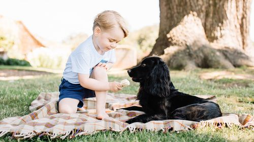 Playful new photographs released to mark Prince George's third birthday