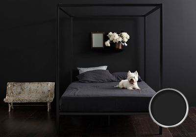 "<a href=""http://www.dulux.com.au/colour/colour-wall?gclid=Cj0KEQiAtMSzBRDs7fvDosLZmpoBEiQADzG1vOGgh21ZCvdoey19s9uOhjO5VY8p9CMEkOk1txuxe4caAiHW8P8HAQ"" target=""_blank"">Dulux paint in black caviar</a>"