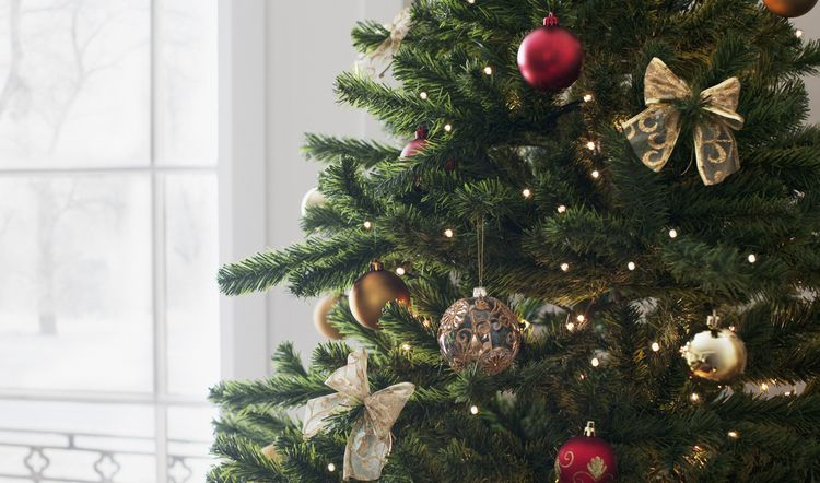When To Put Up Your Christmas Tree Take It Down And Other Tips Christmas Tree Tips Tricks And History