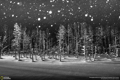 Honourable Mention, Places: Snowflakes