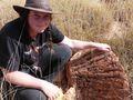 Rare mineral found in WA crater