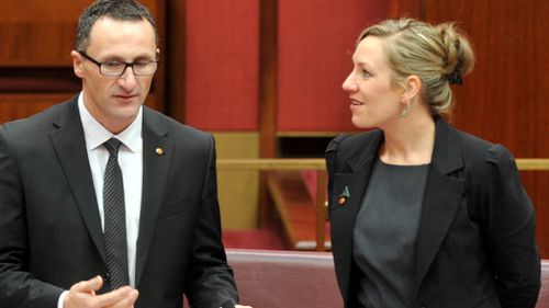Greens urge for drug addiction to be viewed as a health problem