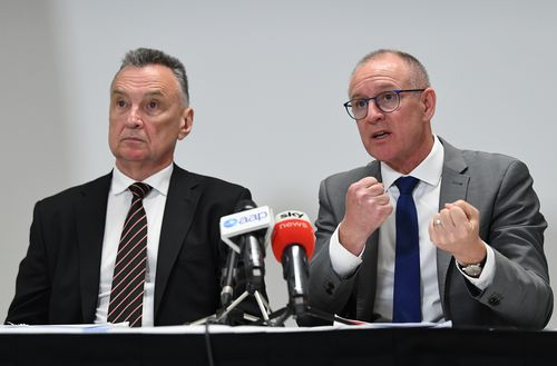 Craig Emerson (left) and Jay Weatherill critisised Albanese's plans.