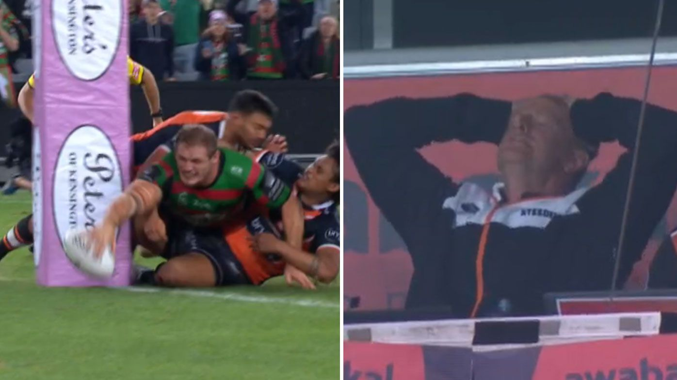 Tom Burgess lands match-winning try for South Sydney in chaotic Golden Point moment
