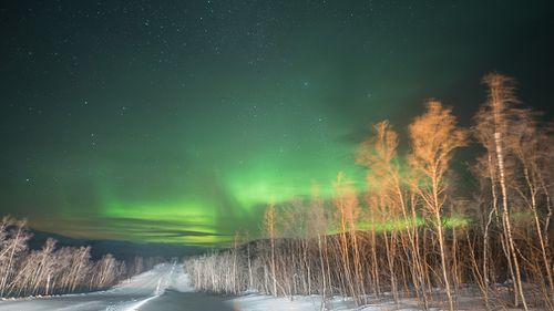 Starry, starry night. Enontekiö, Finland. (9NEWS/Jessica Braithwaite)