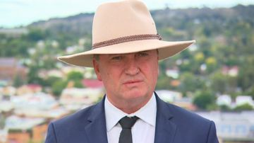 Barnaby resigns as National Party leader