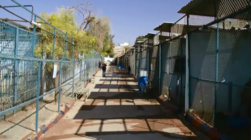 The Jordan zoo environment was unable to properly care for the animals so they agreed to leave them in the care of Animals Australia.