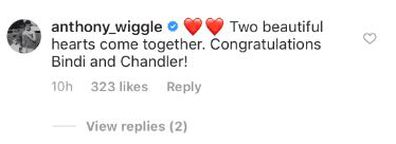 Bindi Irwin, Chandler Powell, wedding, celebrities, messages, congratulations