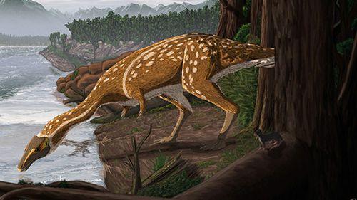 An artist's impression of an elaphrosaur