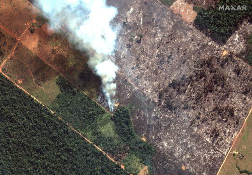 The states that have been most affected by fires this year are Mato Grosso, Para and Amazonia.