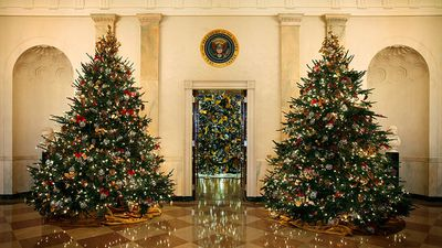 They need to pick a theme for the White House Christmas tree.
