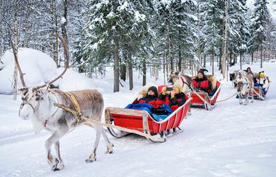 Visitors reindeer sledding in Rovaniemi in winter