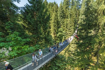 <strong>Capilano Suspension Bridge, Canada</strong>