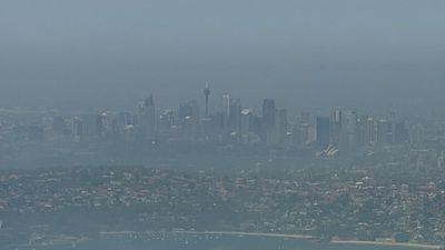 Sydney's CBD enveloped in a rare sea fog.