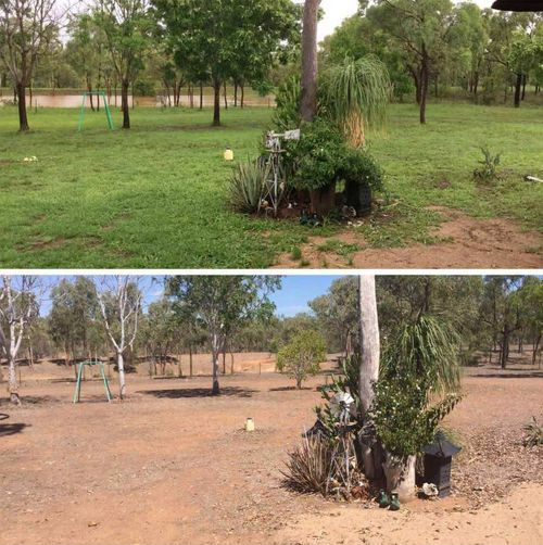 A Charters Towers local reveals the change rain has brought to her yard. (Facebook/Melanie Fernie)