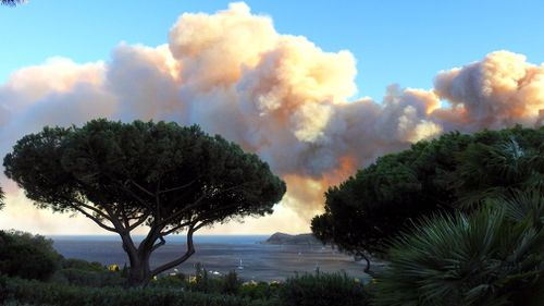 At least eight firefighters and 15 policemen have been injured in the fires. (AFP)