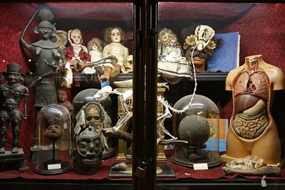<strong>The Viktor Wynd Museum of Curiosities</strong>