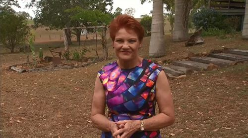 Senator Pauline Hanson was challenged to catch a cane toad on A Current Affair.