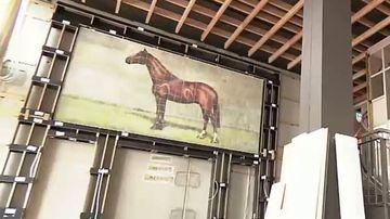 Multi-million dollar stables to draw world's richest to Sydney