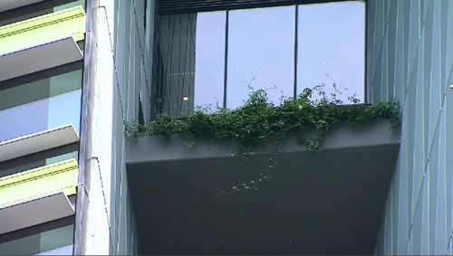 The vertical garden feature is believed to be the cause of the cracks in the damaged Opal Tower at Sydney Olympic Park.