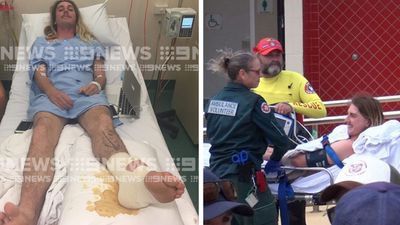 'I just went into attack mode': Man mauled by shark in WA