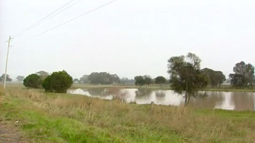 The dam in Winchelsea where Robert Farquharson's car crashed. (9NEWS)